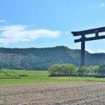 田んぼの中で際立つ大鳥居!熊野本宮大社旧社地「大斎原」へ