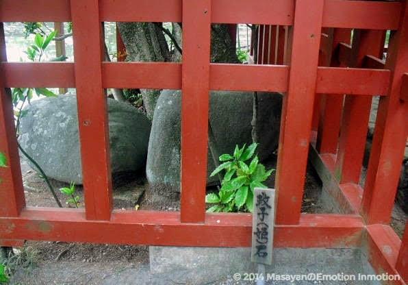 政子(姫)石