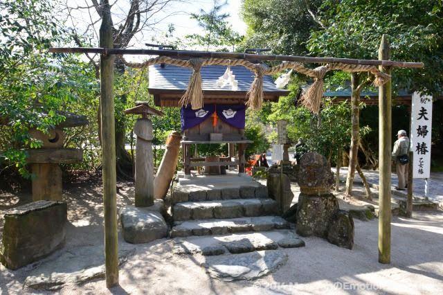 八重垣神社/山神神社と隣に夫婦椿