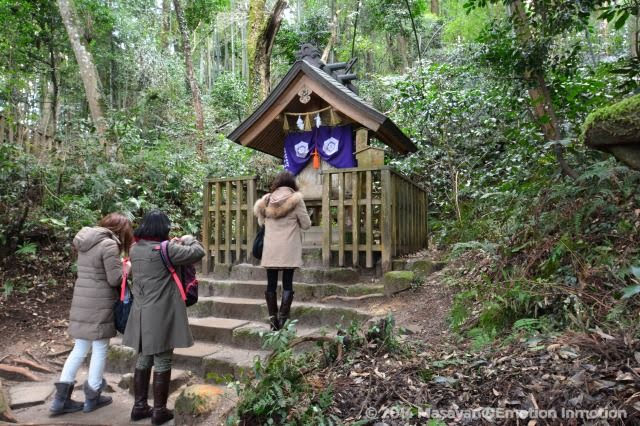 八重垣神社/鏡の池占い
