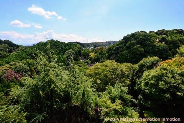 信貴山・朝護孫子寺の本堂からの景色