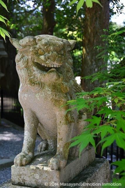 天河神社/狛犬