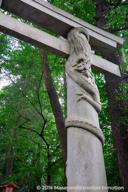 馬橋稲荷神社の鳥居の龍