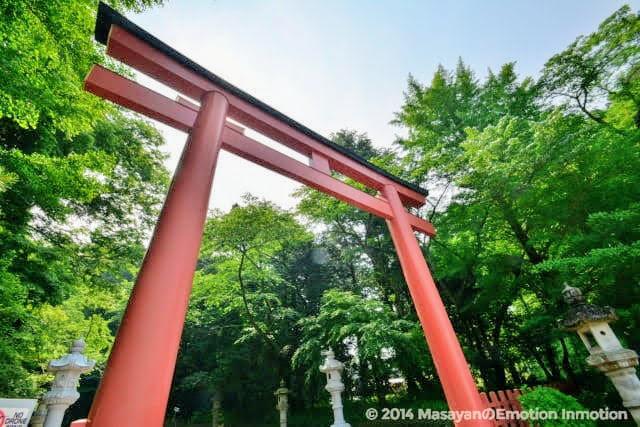 香取神宮の鳥居