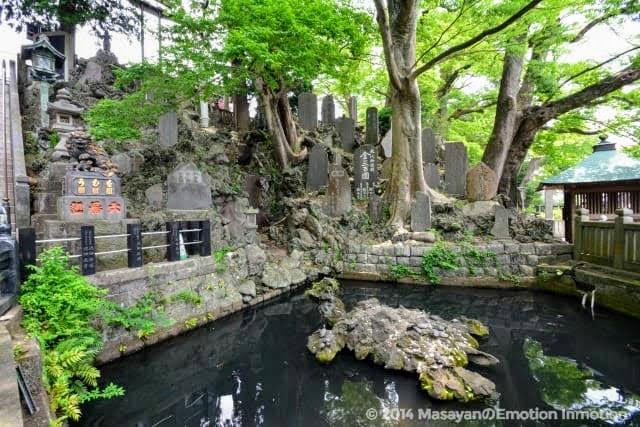 成田山新勝寺の池