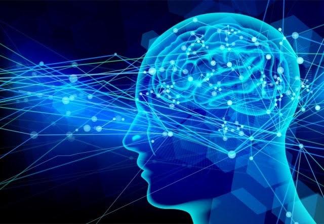 人間の意識