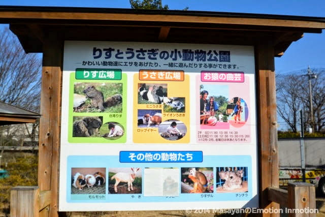 りすとうさぎの小動物公園