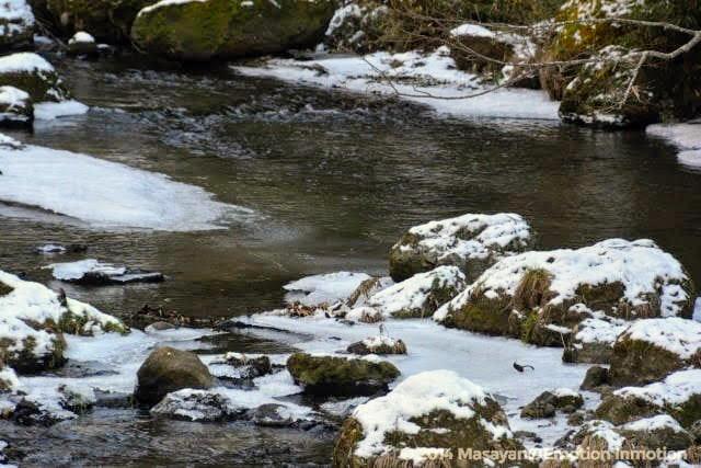 雪が残る川