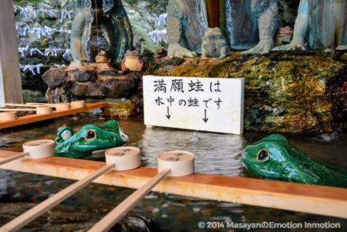二見興玉神社の手水舎のカエル