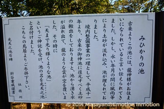 鷲宮神社/光天之池