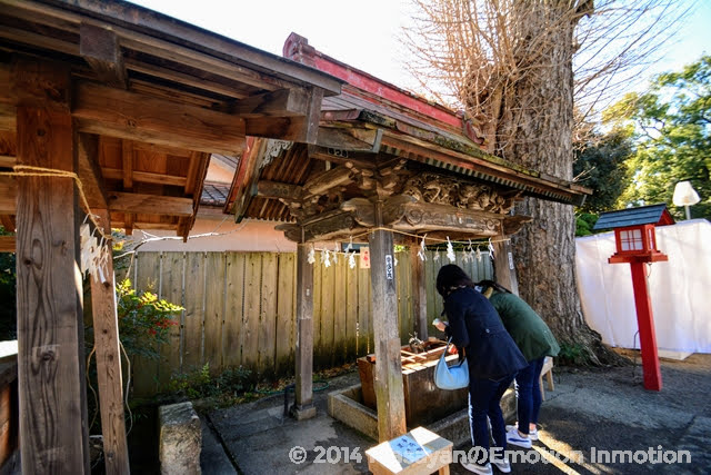 鷲宮神社/手水舎