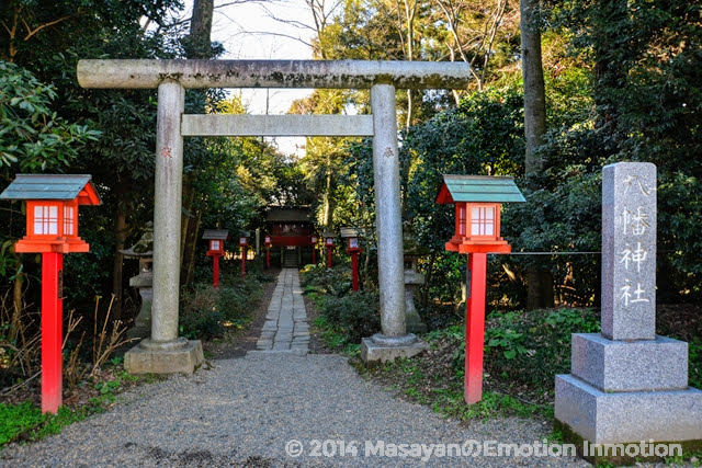 鷲宮神社/八幡神社
