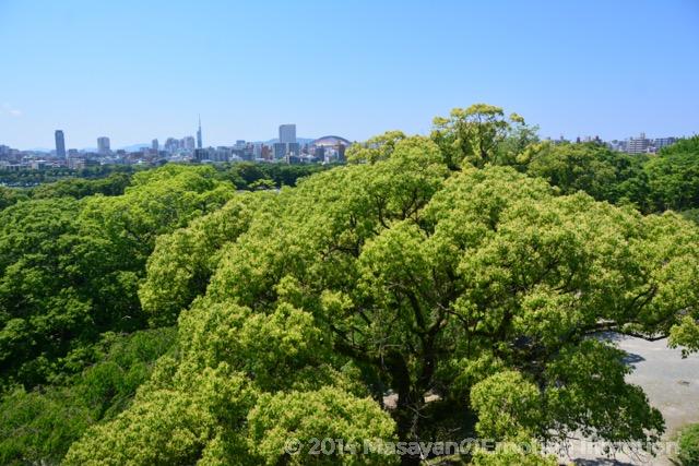 福岡城天守台